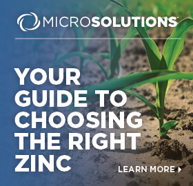 The Andersons Plant Nutrient Zinc Guide
