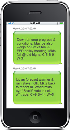 Morning market text